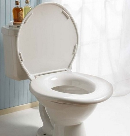 Big John Toilet Seat Original High Capacity Ada Compliant