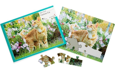 Image of 13 Piece Jigsaw Puzzles by Active Minds