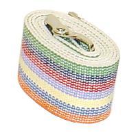 Rainbow-Economy-Gait-Belts