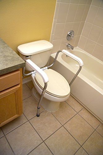 Groovy Essential Bath Safety Toilet Rails Gmtry Best Dining Table And Chair Ideas Images Gmtryco