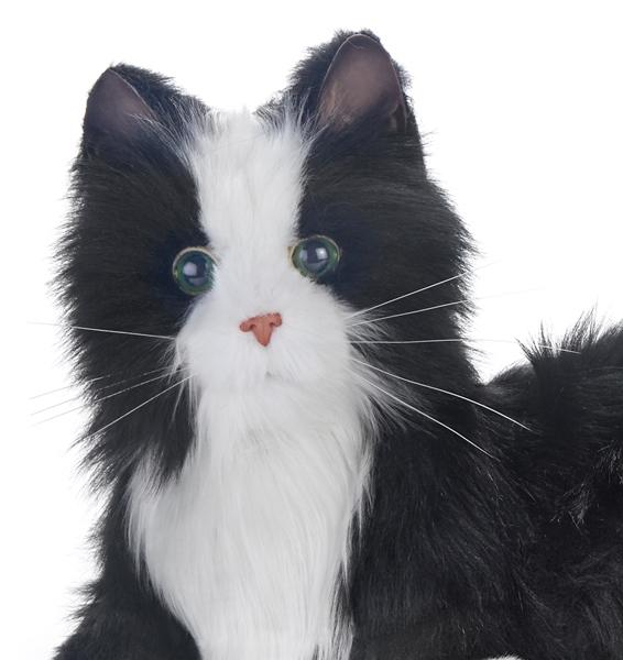 Joy-for-All-Black-Companion-Cat